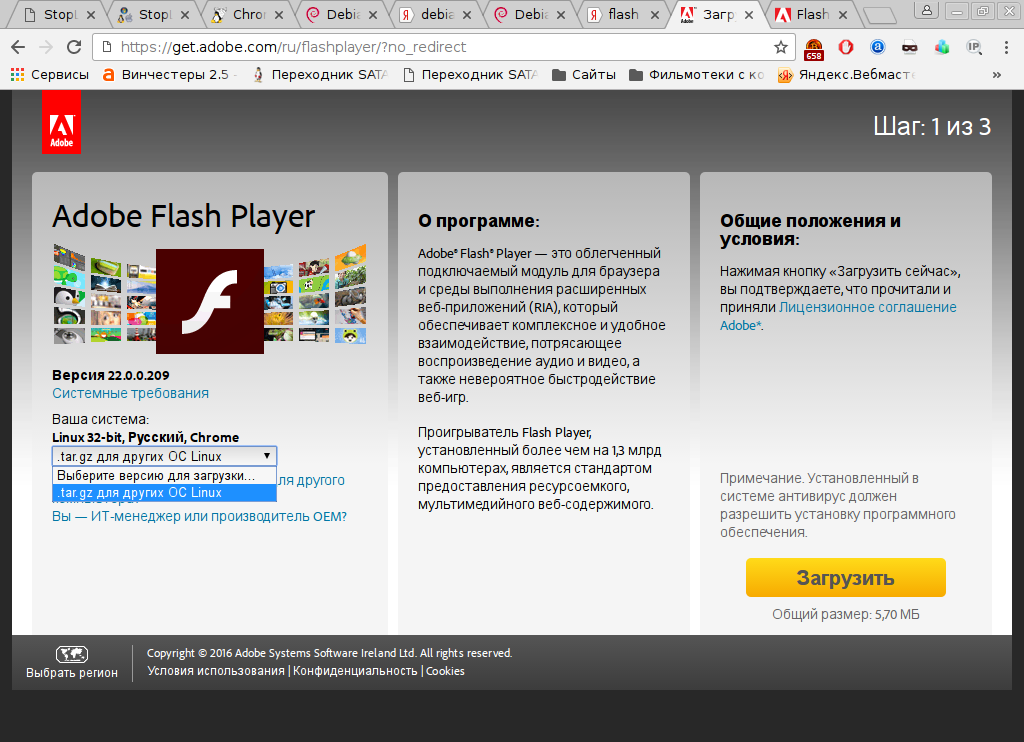 adobeflash.png (151.83 Kb)